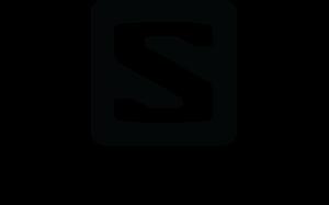 salomon-logo